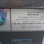 "REAL Original RIAA The Notorious B I G PLATINUM RECORD for ""Life After Death"""